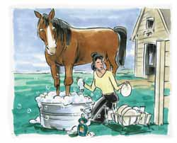 picture of woman washing her dishes with her horse